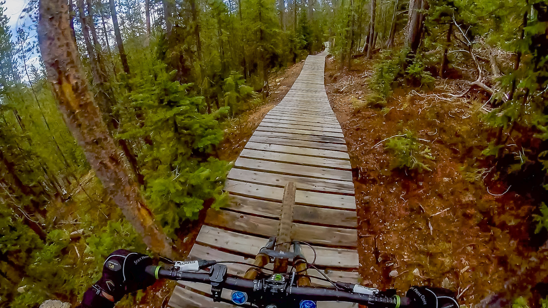 Downhill mountain biking at Trestle Bike Park - MitchTobin com